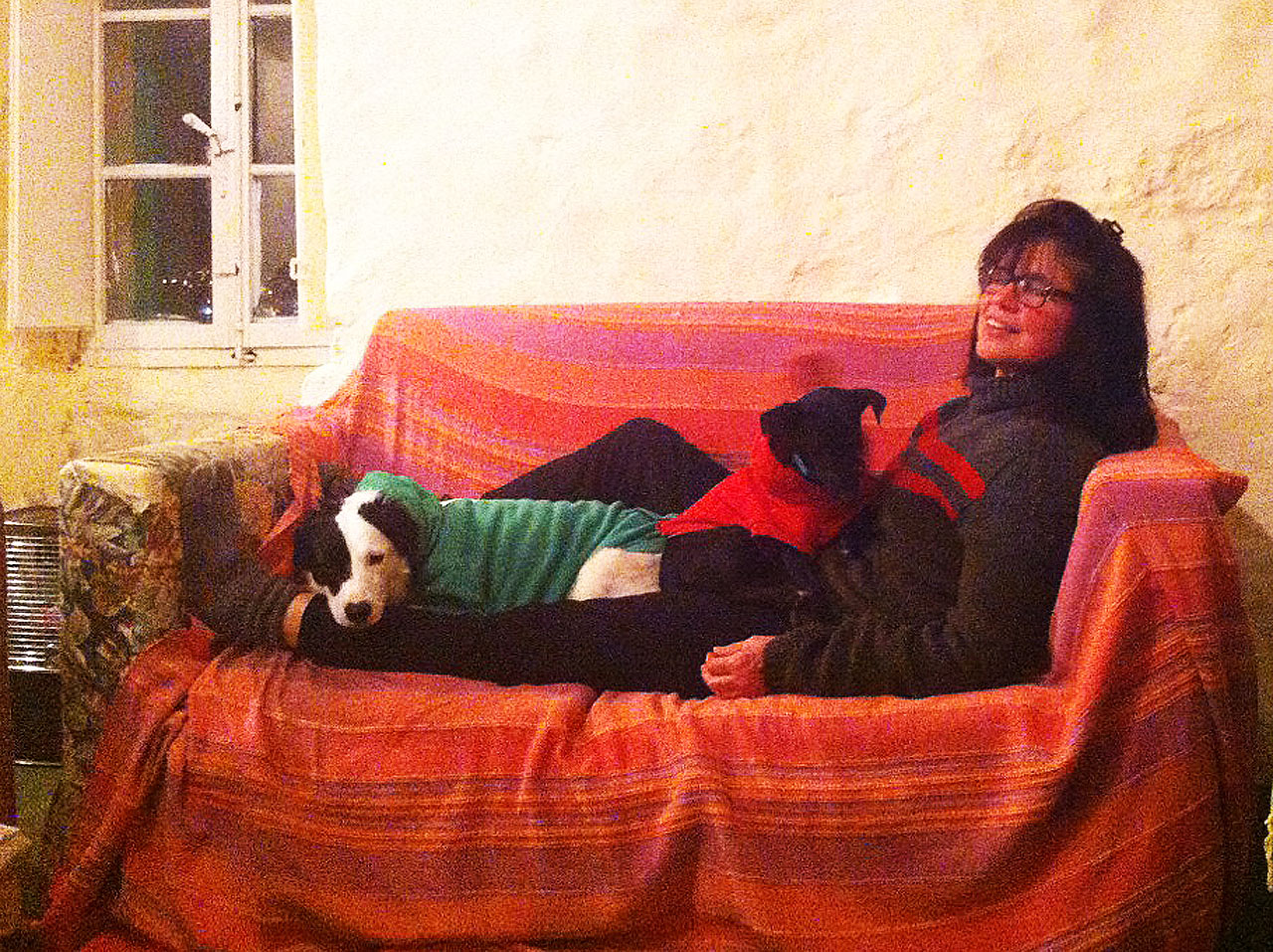Debbie and her beloved dogs Pepper and Elsa