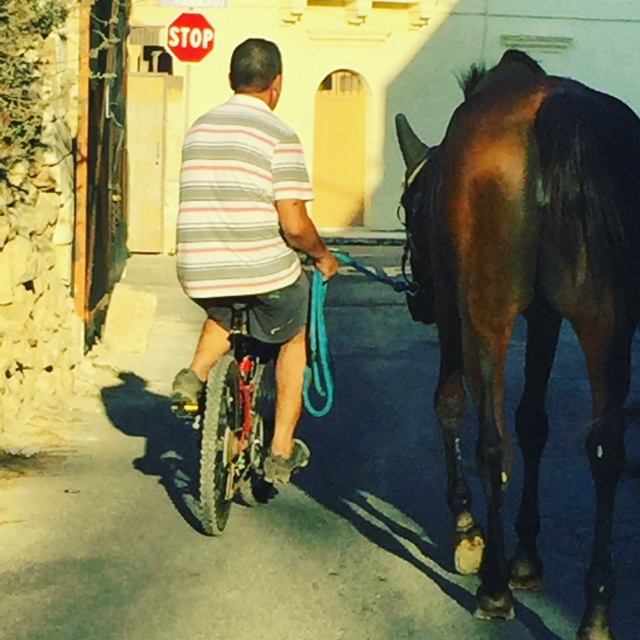 Slow Pace of Life - Traffic Busy in Gozo