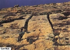 Cart ruts in Sannat, Gozo