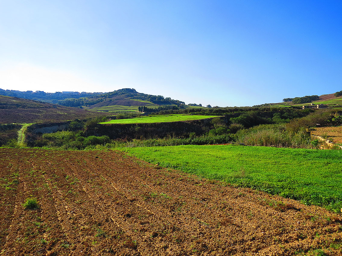 Richly cultivated valley in Gozo